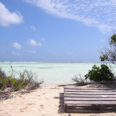 Bestemming: Bonaire