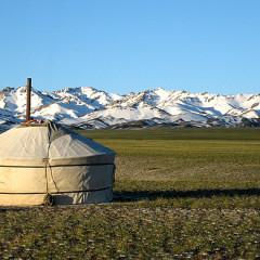 Avontuur in Mongolië