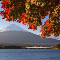 Een trip naar Japan