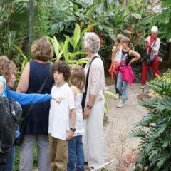Voordelen van vlindertuinen