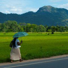 Reistip Indonesië; Eilandhoppen!